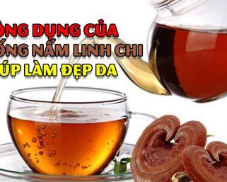 Uống nấm linh chi giúp cải thiện làn da?